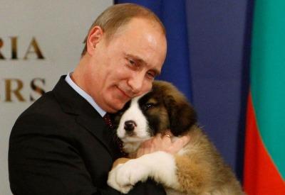 Vladimir-Putin-Dog